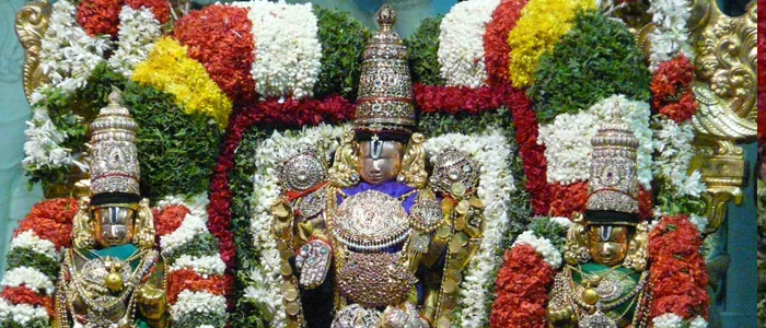 Balaji Packages