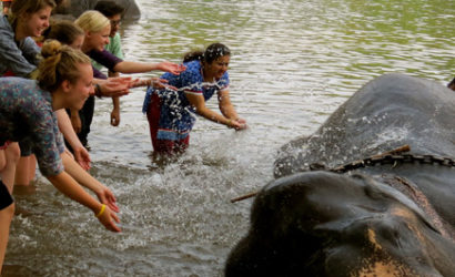 Kerala or Coorg Honeymoon By Balaji Tour Packages Packages 1